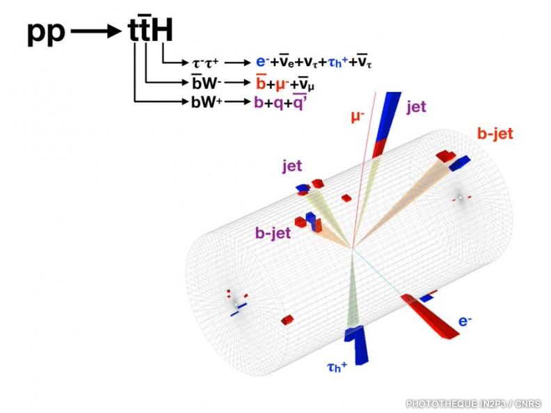 An2010-2017-CMS-HiggsTauTau p1